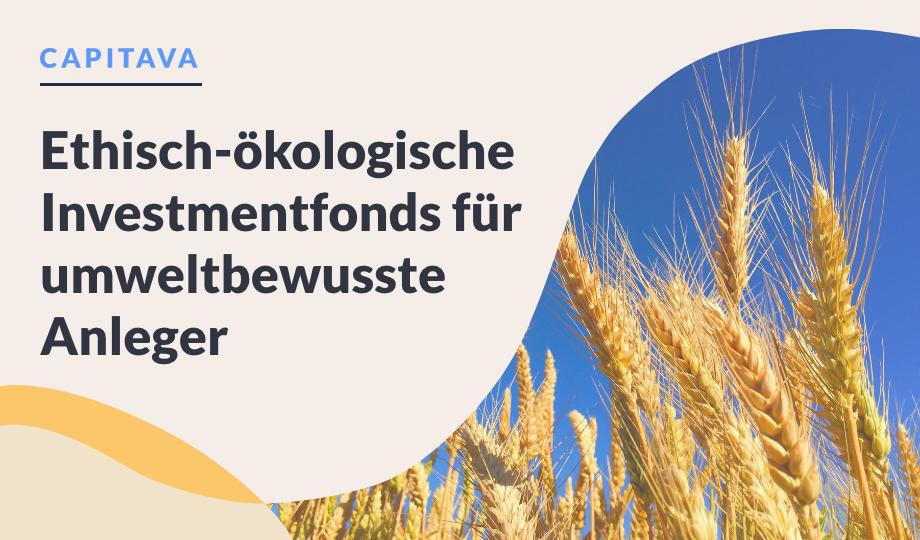 Ethisch-ökologische Investmentfonds für umweltbewusste Anleger image